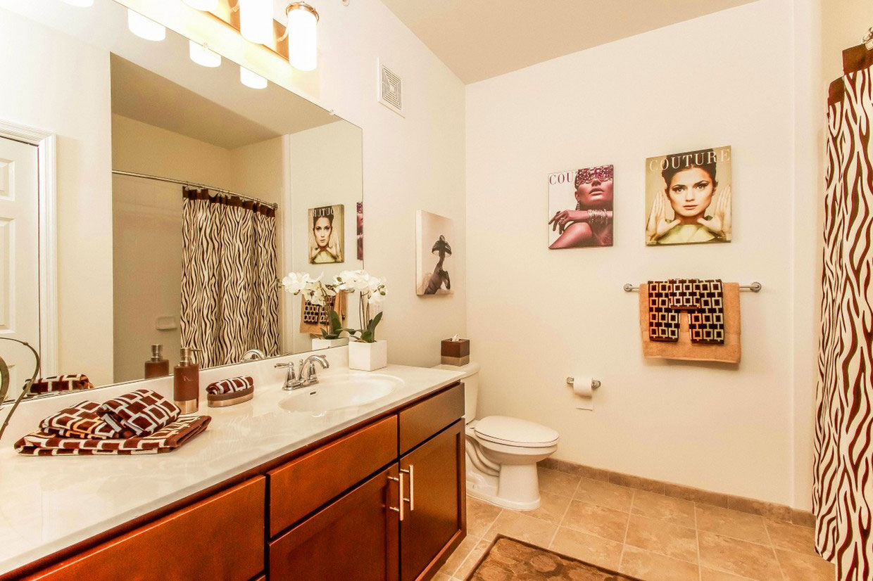 Bathroom with Shower and Tub at Abbey Lane Apartments in Danbury, Connecticut