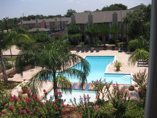 Resort-Style Swimming Pool at Ashford Court Apartments in Houston, Texas