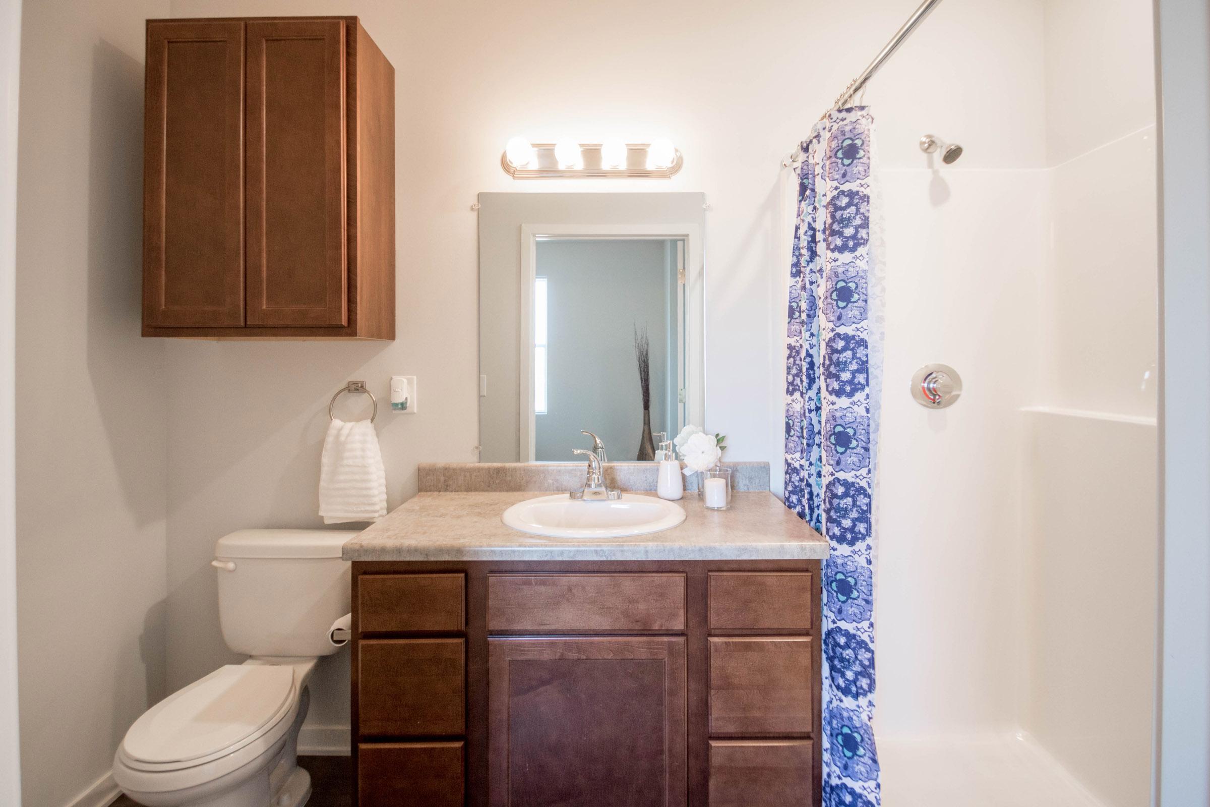 Single Vanity at Aspen Grove Apartments in Omaha, NE