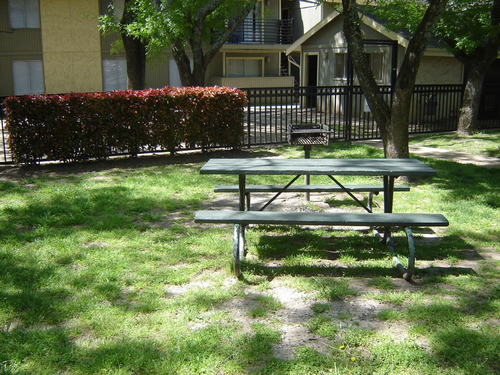 Picnic Tables at Aubry Hills Apartments in Austin, TX
