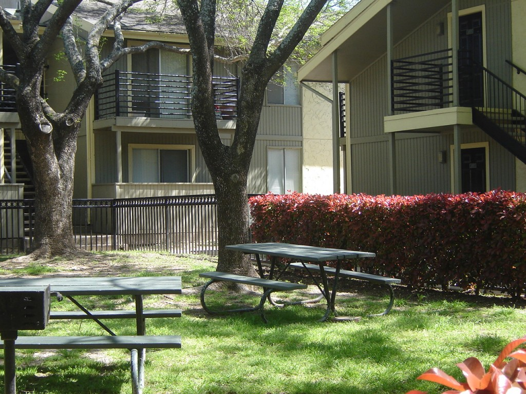 Picnic Area at Aubry Hills Apartments in Austin, TX