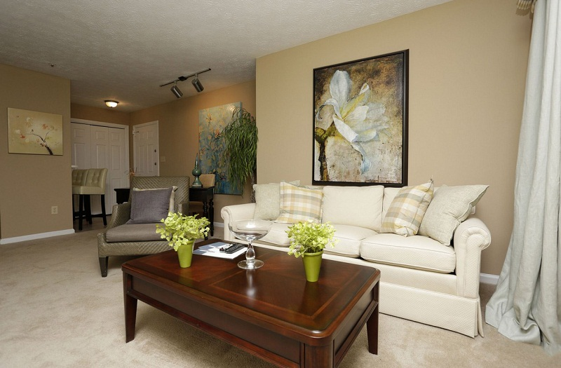 Living Room at the Augusta Commons Apartments in Marietta, GA