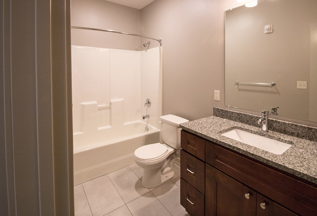 Shower and Tub Combination at Avenue 204 at Royal View Apartments in Gretna, Nebraska