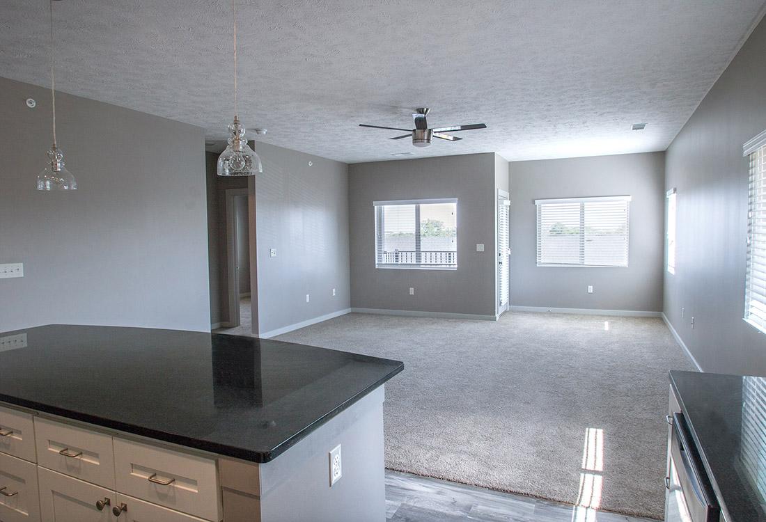 Plush Carpeting at Avenue 204 at Royal View Apartments in Gretna, Nebraska