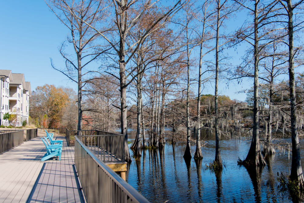 Lakeside Views at The Reserve on Bayou DeSiard Apartments in Monroe, LA