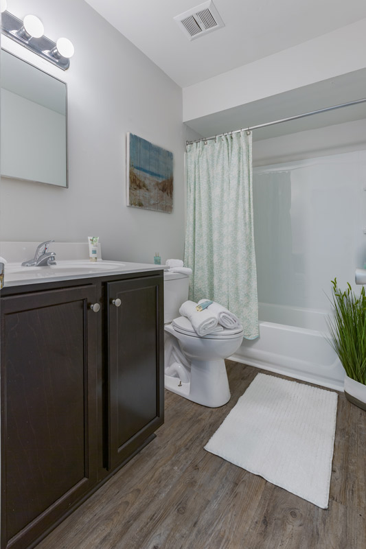Bathtub and Shower at BayPointe Crossing Apartments in Virginia Beach, Virginia