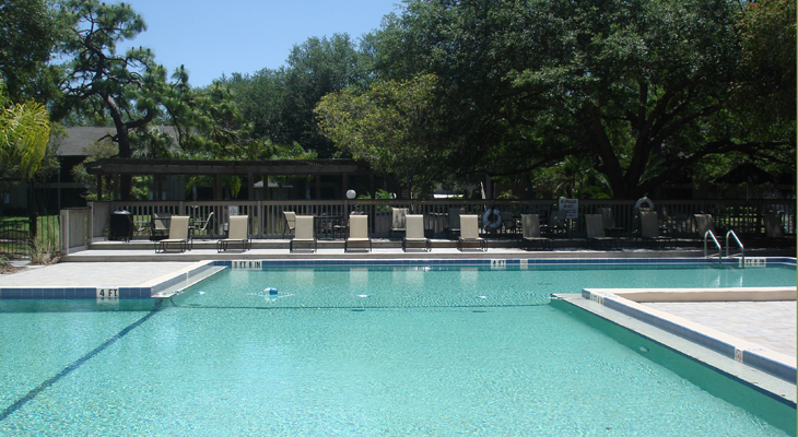 Sparkling Swimming Pool at the Baywater Apartments in Tampa, FL