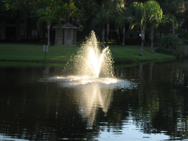 Waterfalls and Fountains at the Baywater Apartments in Tampa, FL
