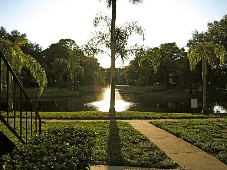 Jogging Path at the Baywater Apartments in Tampa, FL