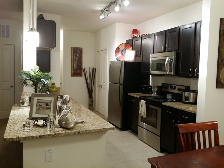 Sleek Kitchen Features at Brookstone Park Apartments in Covington, LA