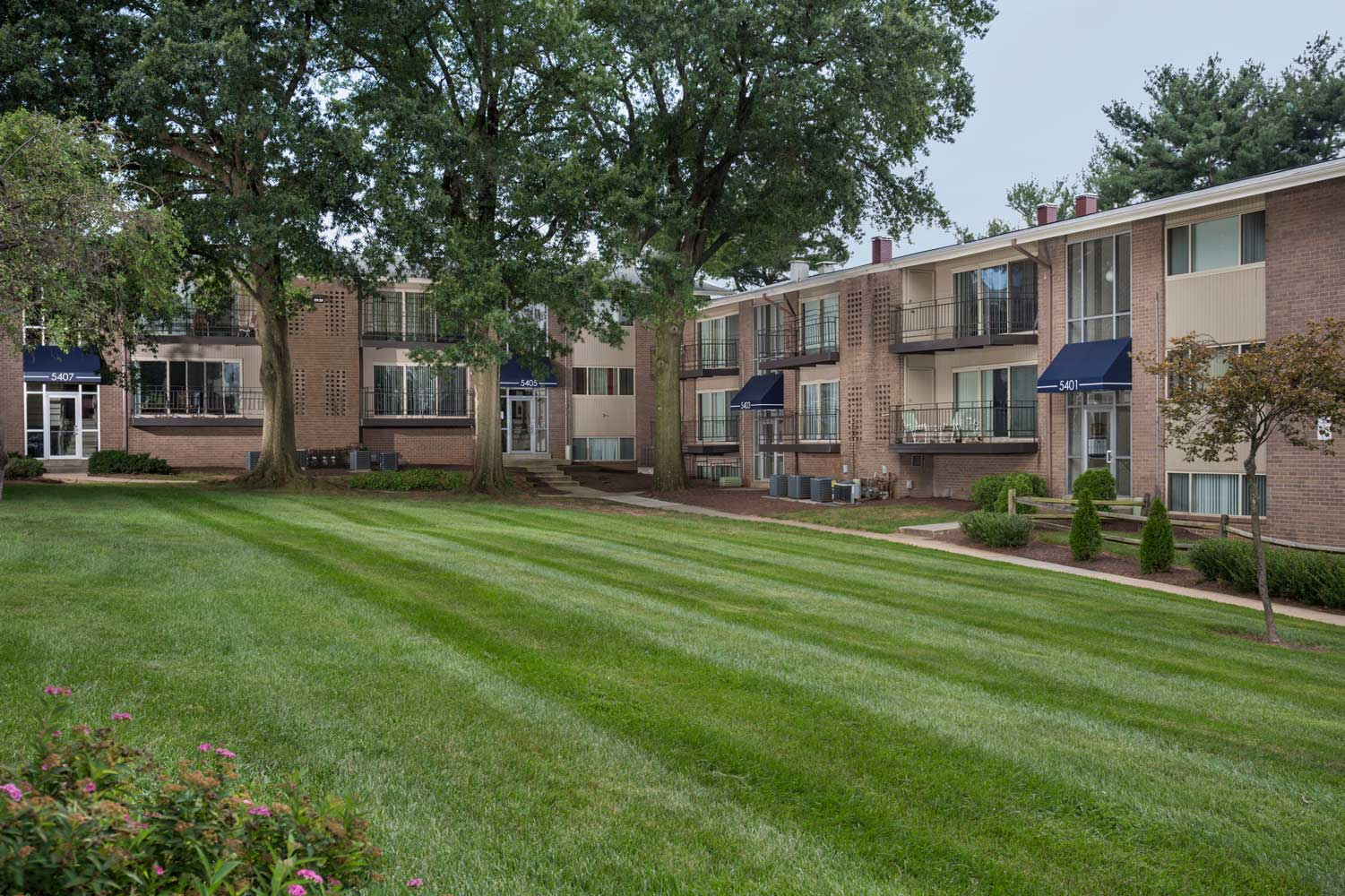Professionally maintained grounds at Carrollon Manor Apartments in New Carrollton, MD