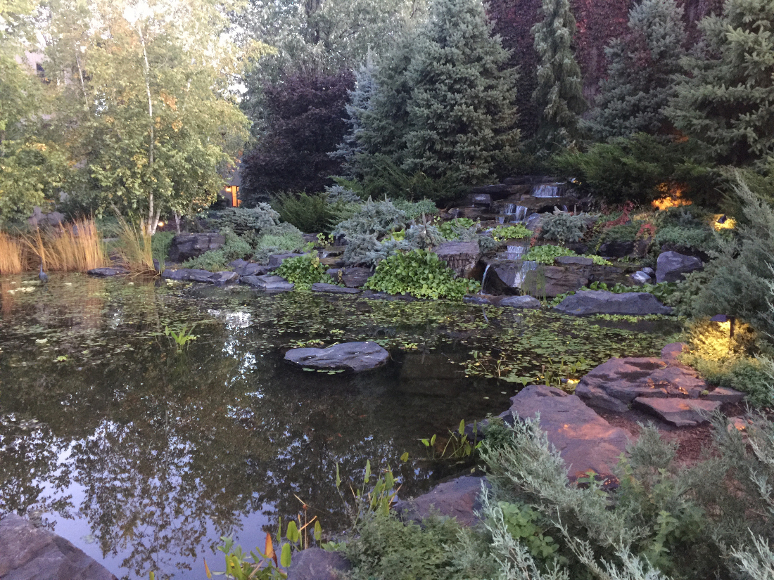 Pond with Turtle Habitat at Cedars of Edina Apartments in Edina, MN