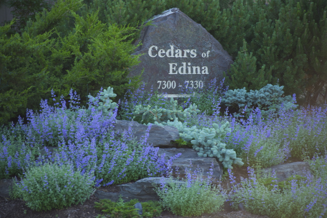 Pet-Friendly Apartments at Cedars of Edina Apartments in Edina, MN