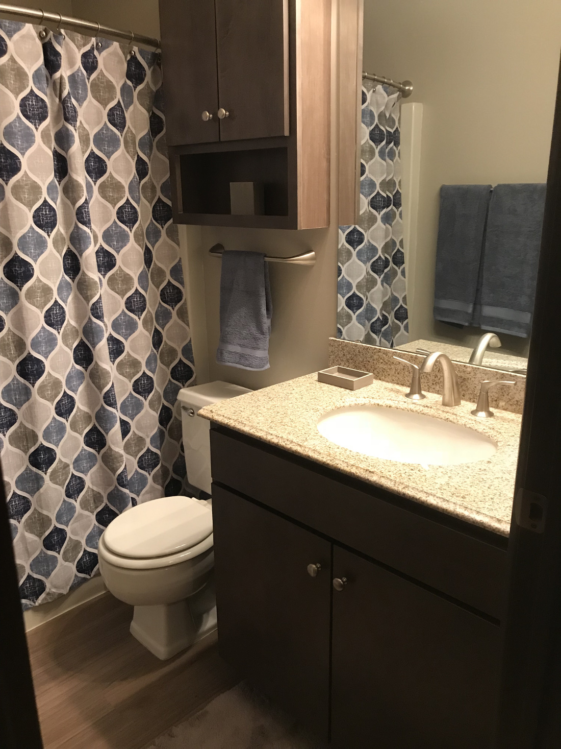 Bathtub and Shower Combination at Cedars of Edina Apartments in Edina, MN