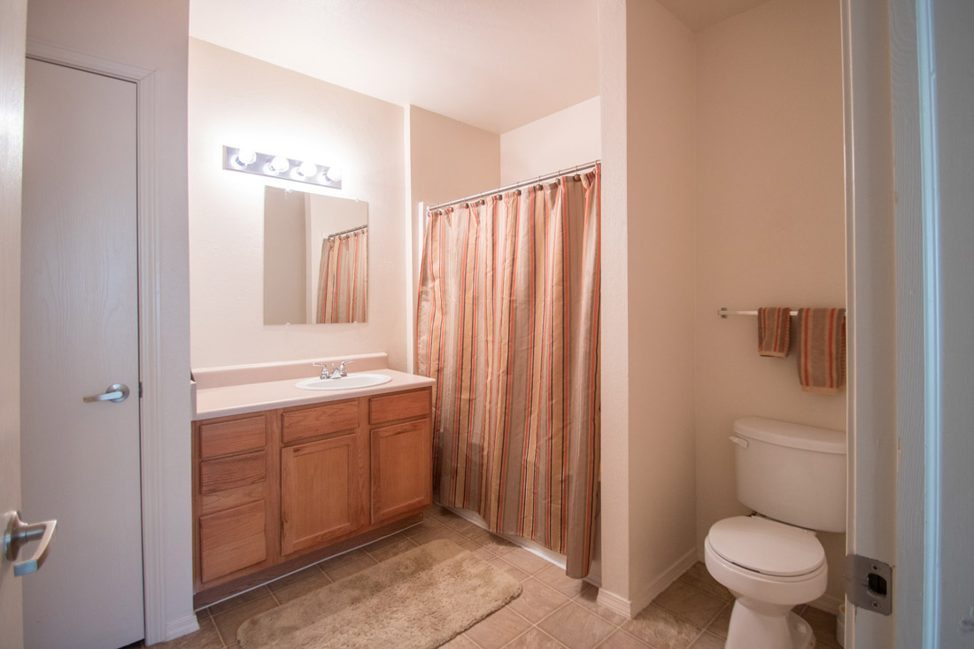 Shower and Tub Combination at Chapel Ridge of Johnston Apartments in Johnston, IA