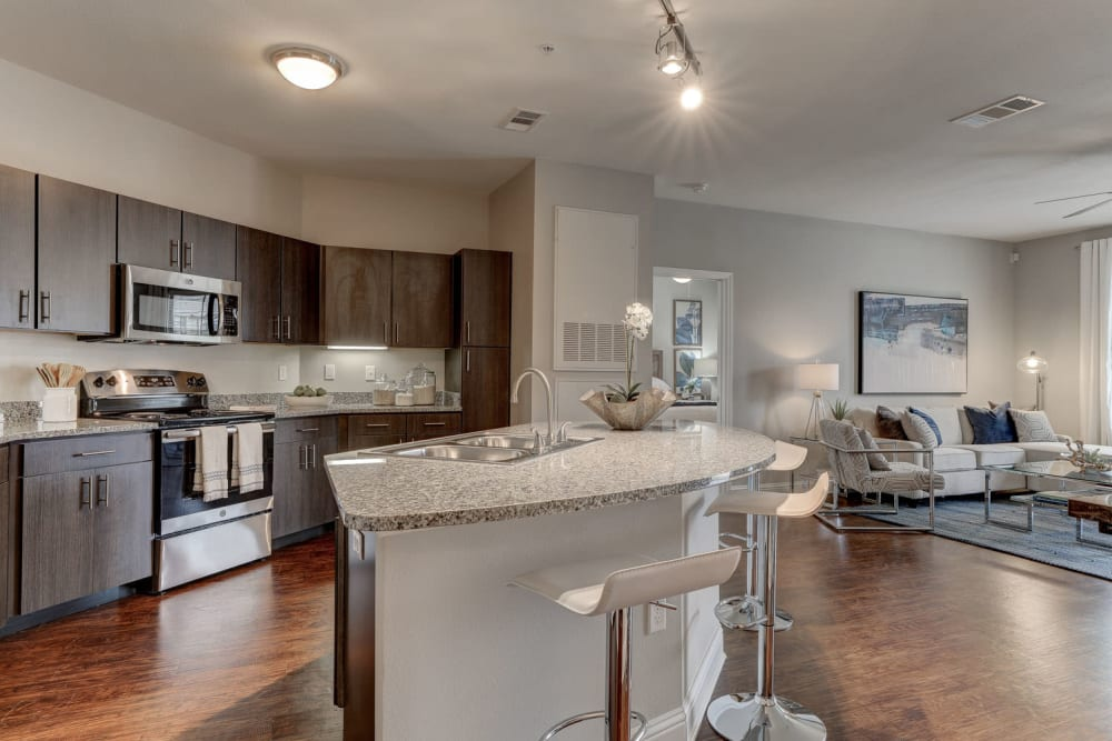 Stainless Steel Appliances at The Reserve at Couret Farms Apartments in Lafayette, LA