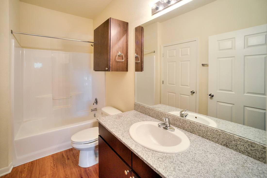 Shower and Tub Combination at Cypress Bend Village Apartments in Beaumont, TX