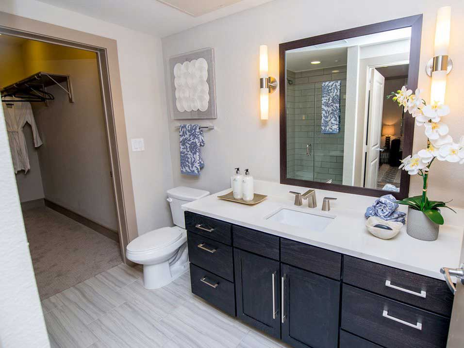 Bathroom Vanity at Dolce Midtown Apartments in Houston, Texas