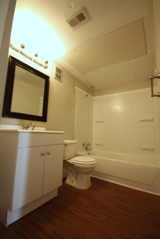 Shower and Tub Combination at Dover Place Apartments in Houston, Texas