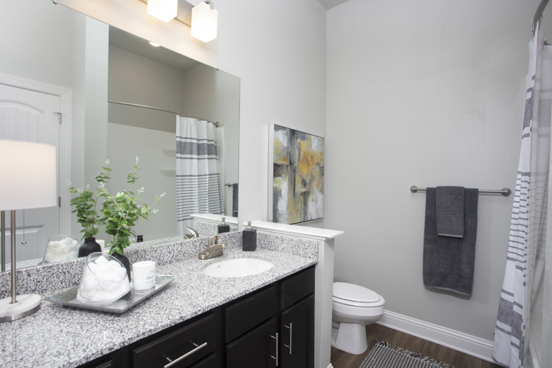 Bathroom Vanity at Elan at Terra Bella Apartments in Covington, Louisiana