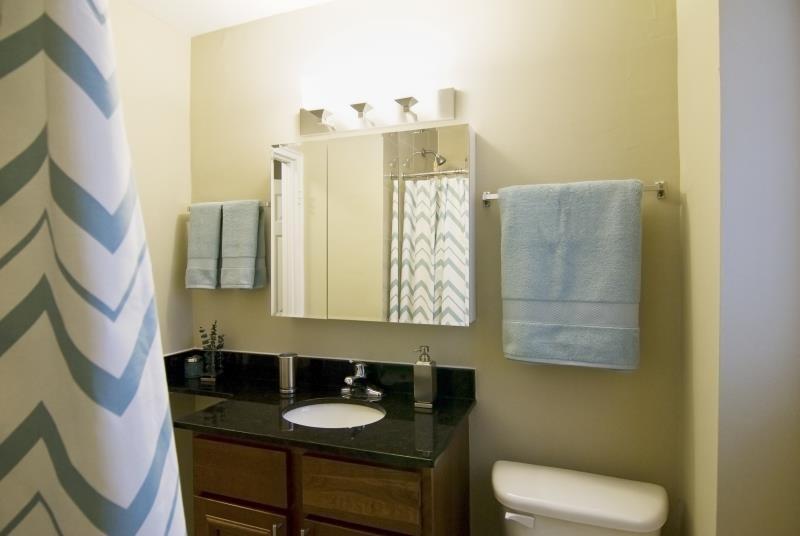 Bathroom Vanity at Elmhurst Terrace Apartments in Elmhurst, Illinois