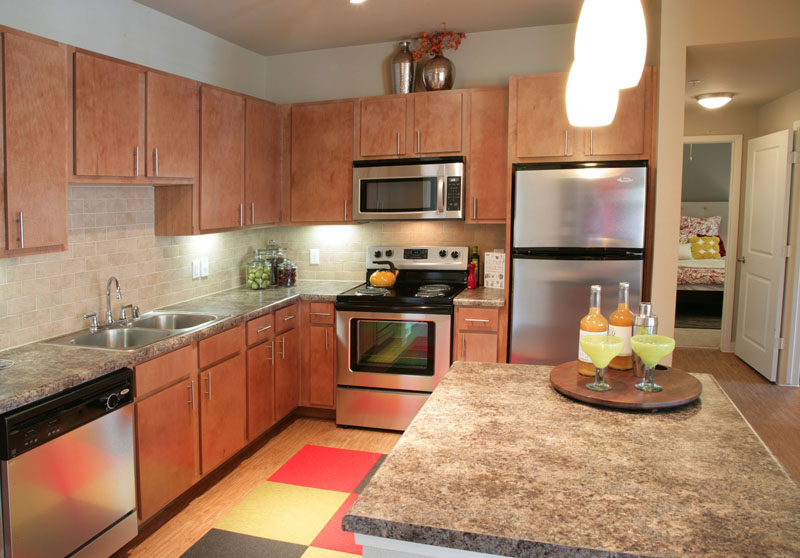 Stainless Steel Appliances at Encore on Alsbury Apartments in Burleson, TX