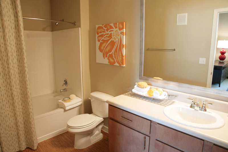 Bathroom at Encore on Alsbury Apartments in Burleson, TX