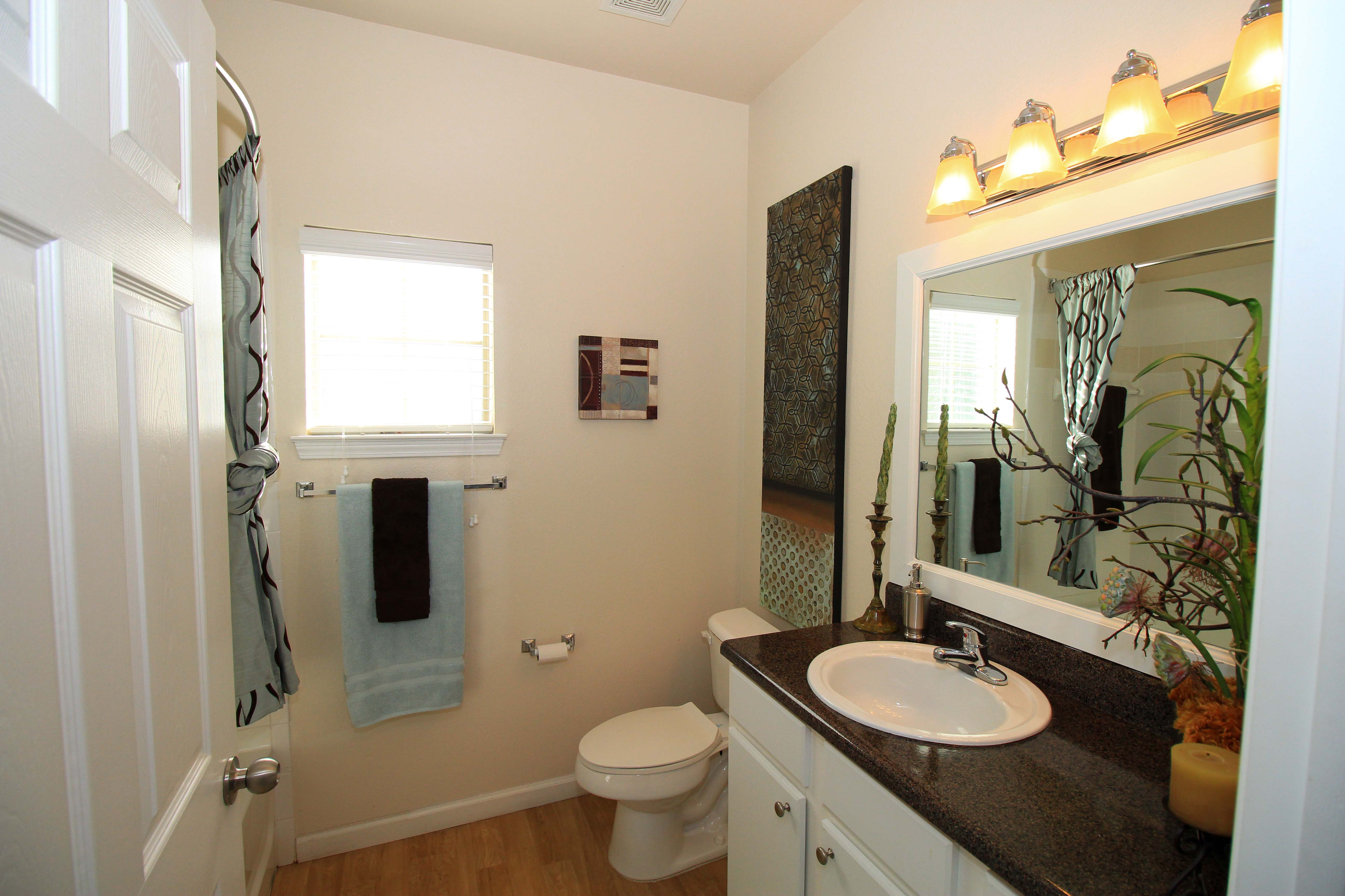 Guest Bathroom Luxury Upgrade at The Oxford at Estonia Apartments in San Antonio, TX