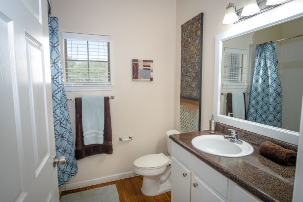 Single Vanity at The Oxford at Estonia Apartments in San Antonio, TX