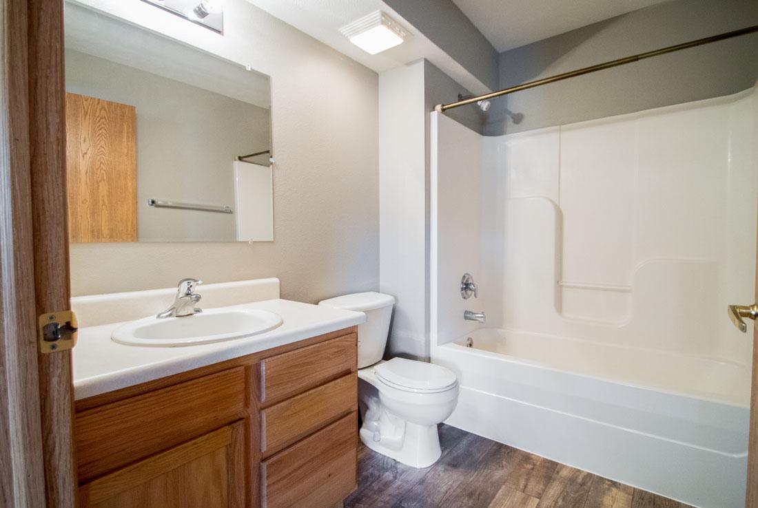 Spacious Bathroom with Wood-Look Flooring
