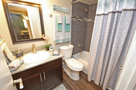 Vinyl Plank Flooring and Beautiful Tile in Bathrooms