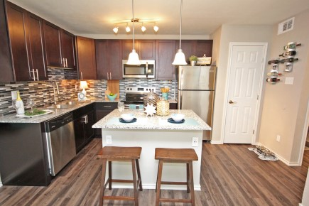 Beautiful Black and Stainless Steel Appliances at Forest Cove Apartments in Dallas, Texas