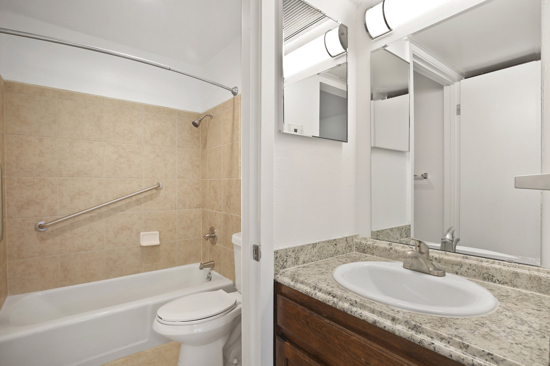 Upgraded Bathrooms at Forest Dale Apartments in Dallas, Texas