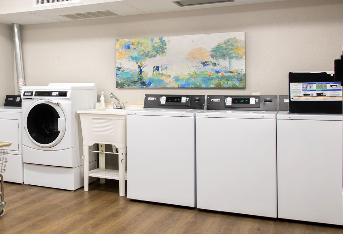 Community Laundry at Forest Dale Apartments in Dallas, Texas