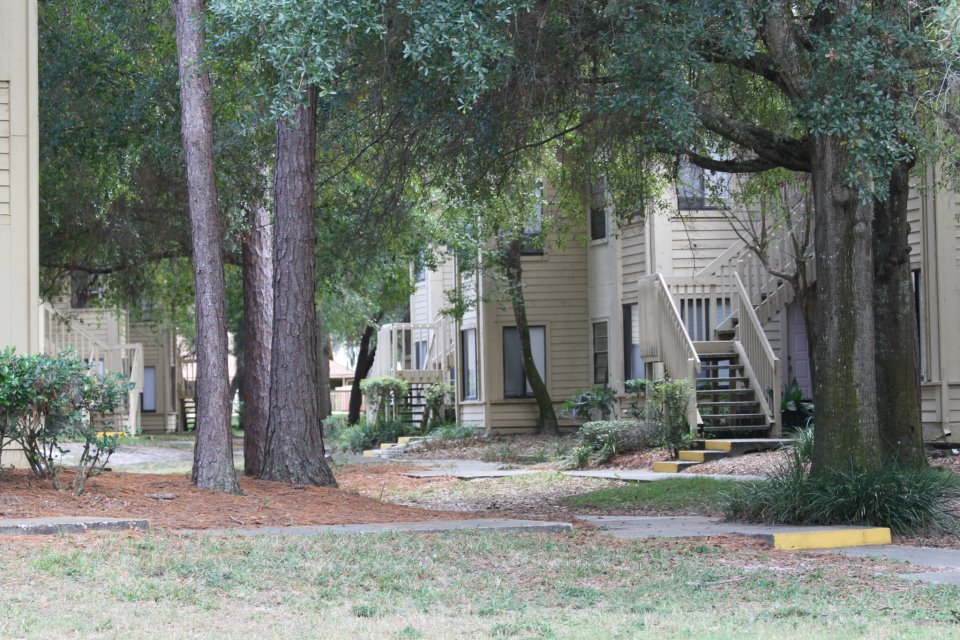 Mature Trees and Lanscaping at Harbor Oaks Apartments in Hudson, FL