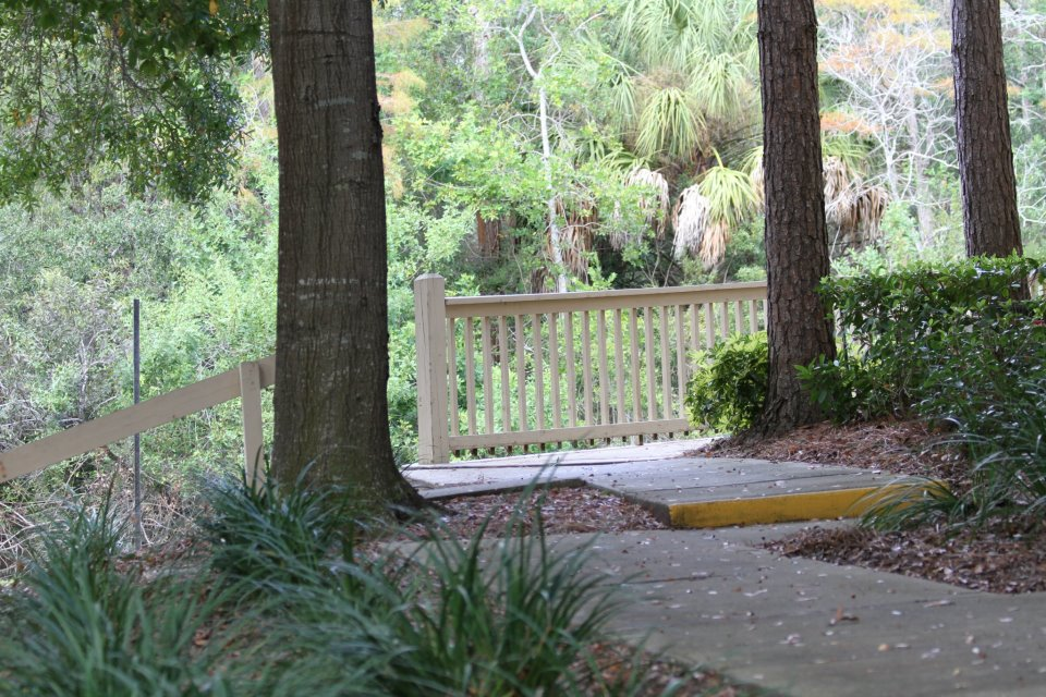 Walking Paths at Harbor Oaks Apartments in Hudson, FL