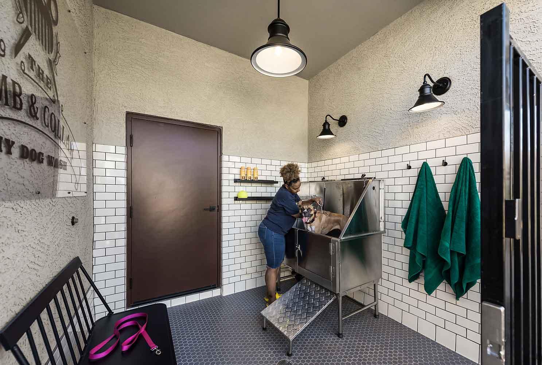 Pet Salon at Harvard Crossing Apartments in Goodyear, AZ