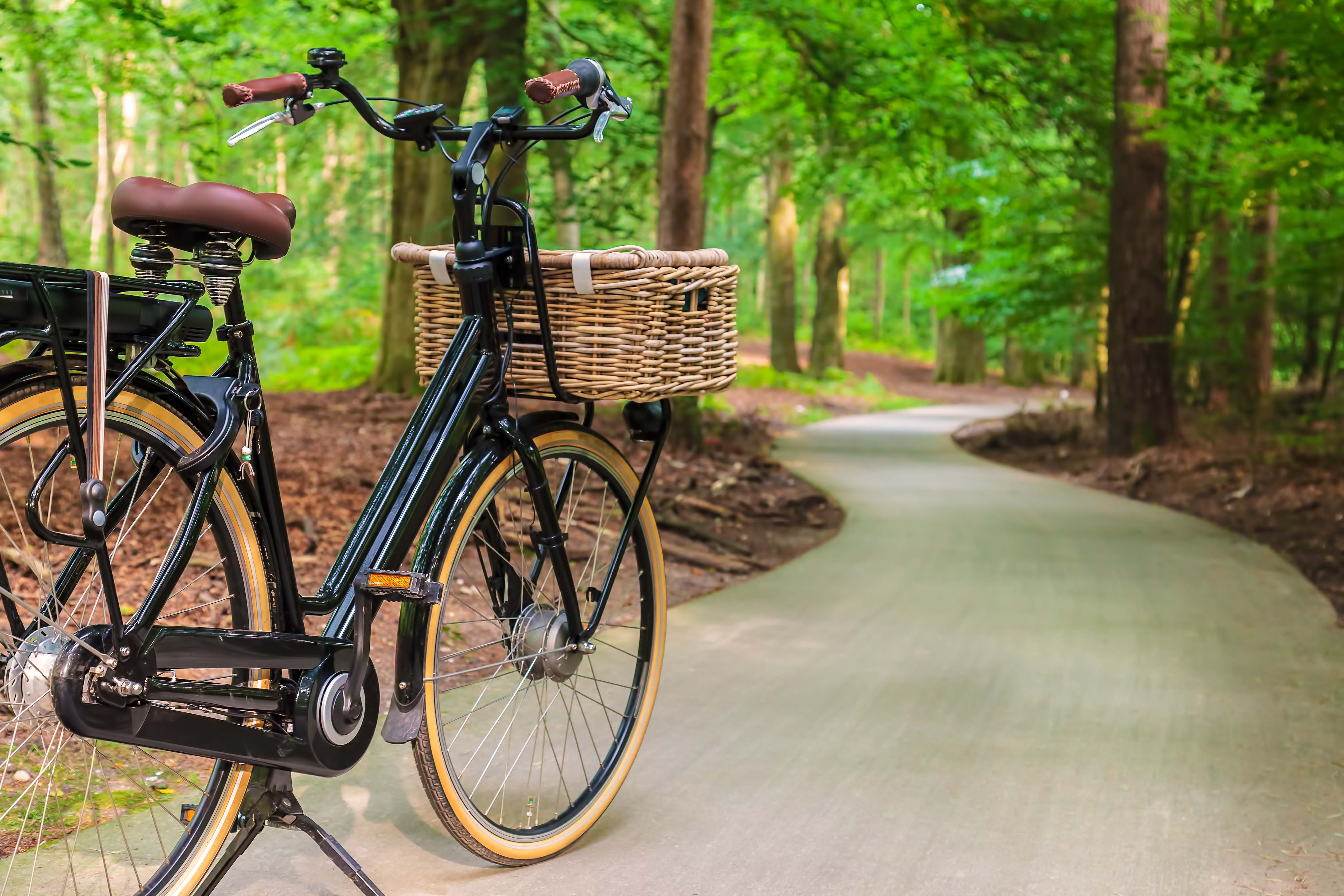 Outdoor Recreational Opportunities at The Heights at Northwinds Apartments in Alpharetta, GA