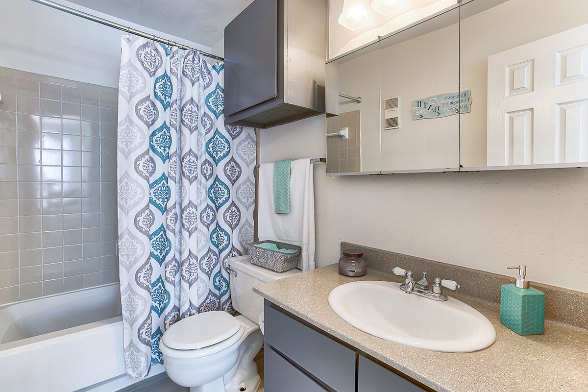 Upgraded Bathroom at Indian Run Apartments in Abilene, TX