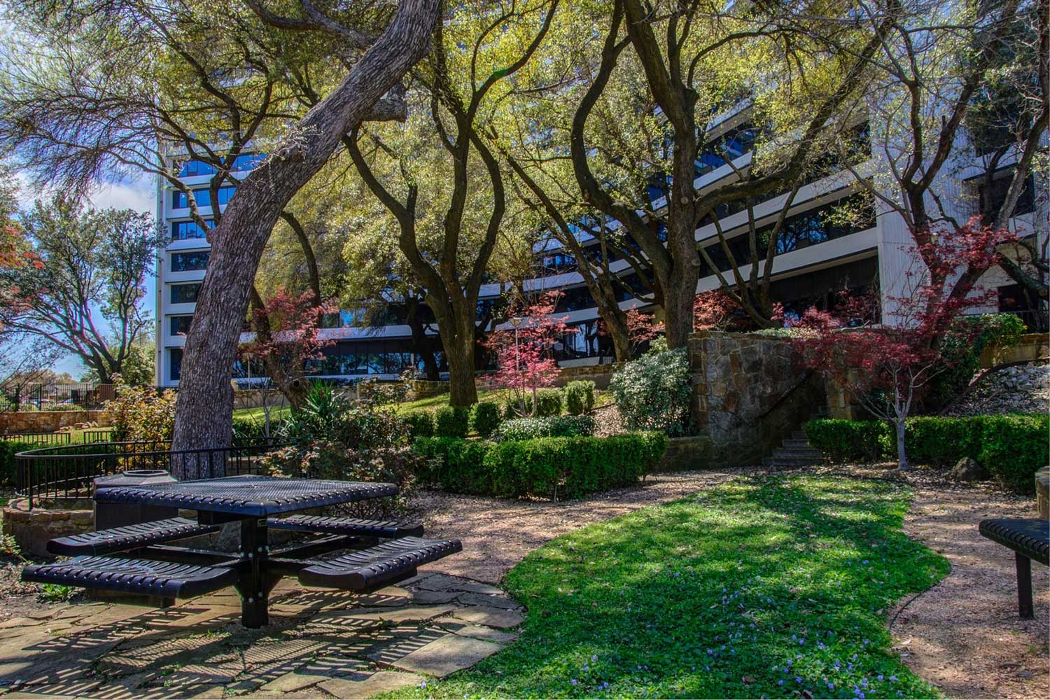 Shaded Picnic Areas at View at Kessler Park Apartments in Dallas, TX