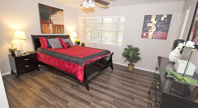 1-Bedroom Apartments at Las Casitas Apartments in DeSoto, Texas