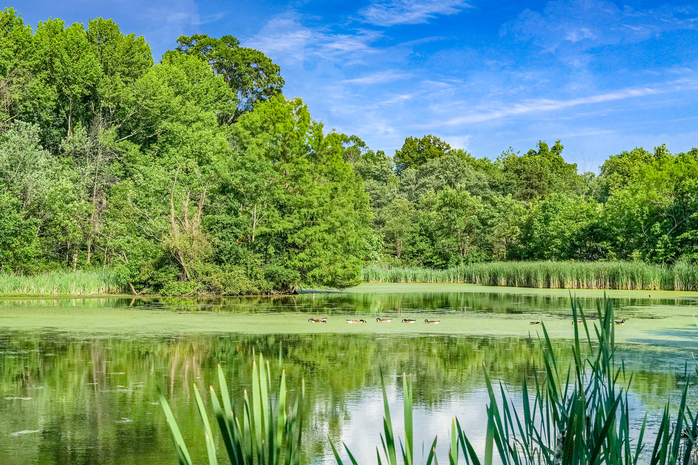 5 minutes to University Hills Duck Pond Park