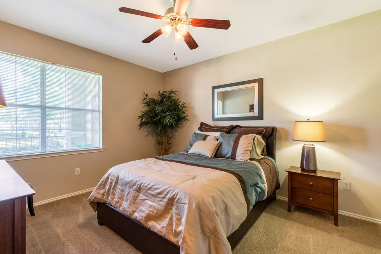 Pet-Friendly Apartments at Limestone Apartments in Houston, Texas