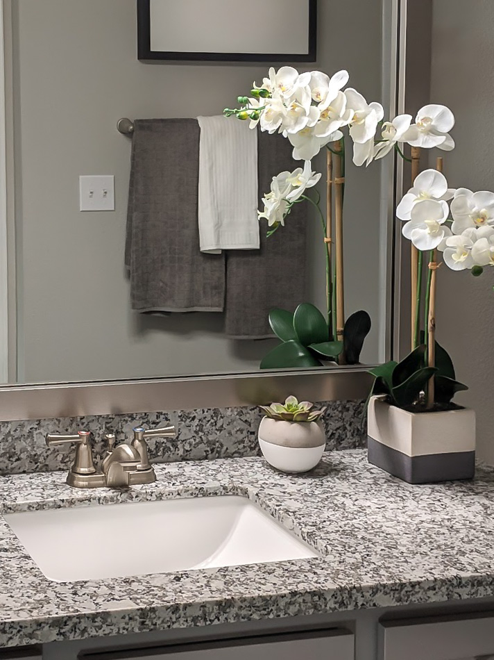 Upscale Finishes at The Link, a Community of Luxury Apartments in Houston, Texas