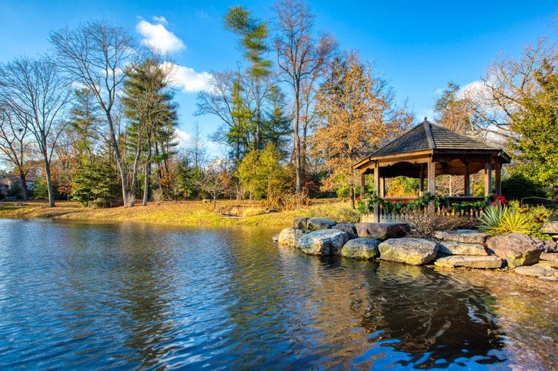 10 minutes to Green Springs Gardens in Alexandria, VA