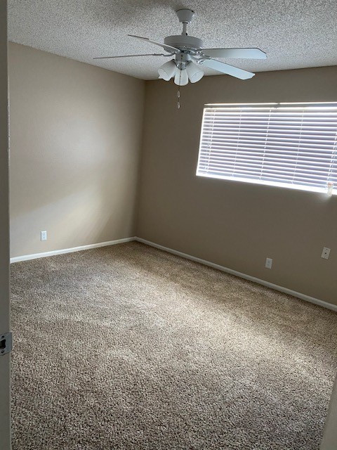 Carpeted Flooring at Magnolia Manor Apartments in West Columbia, Texas