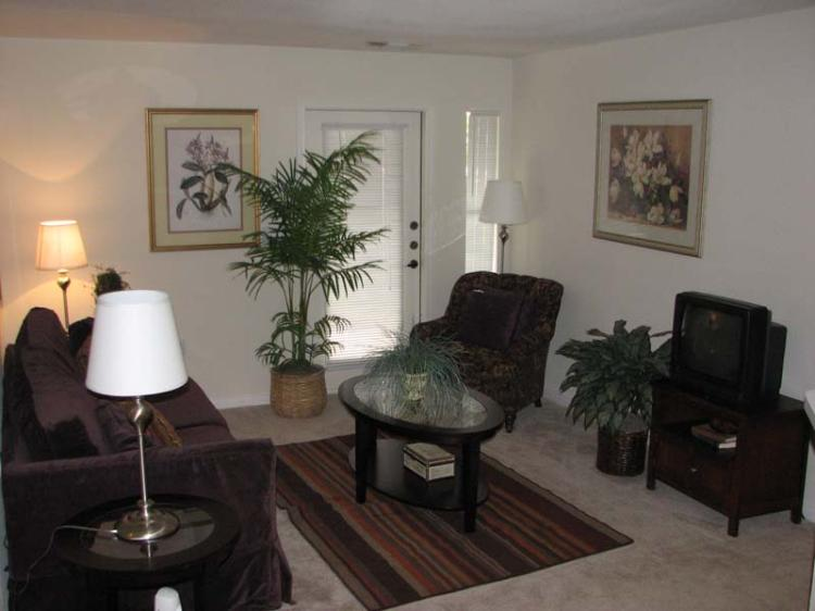 Living Room Interior at the Magnolia Pointe Apartments in Duluth, GA