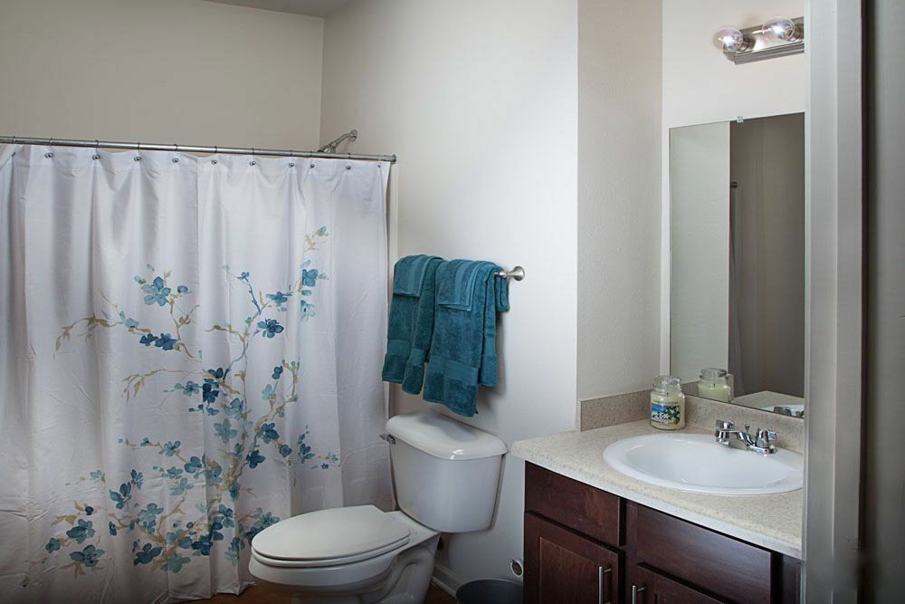 Full Bathrooms at The Mill at McCullough Apartments in Belden, Mississippi