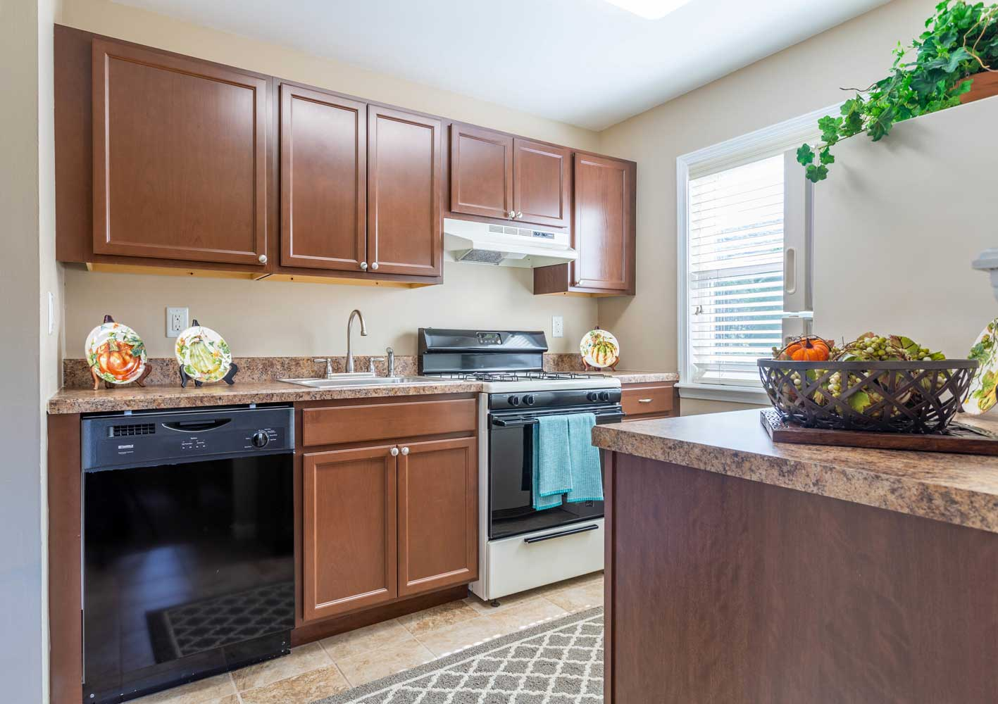 Stainless Steel Appliances at Mountainview Gardens Apartments in Fishkill, NY