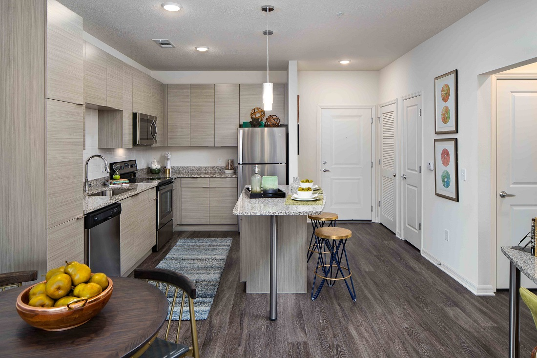 Island Kitchen at M South Apartments in Tampa, Florida